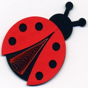 ladybug512_512